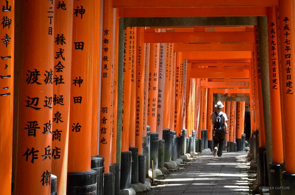 Day 155 Fushimi Inari Taisha Shrine Kyoto Japan