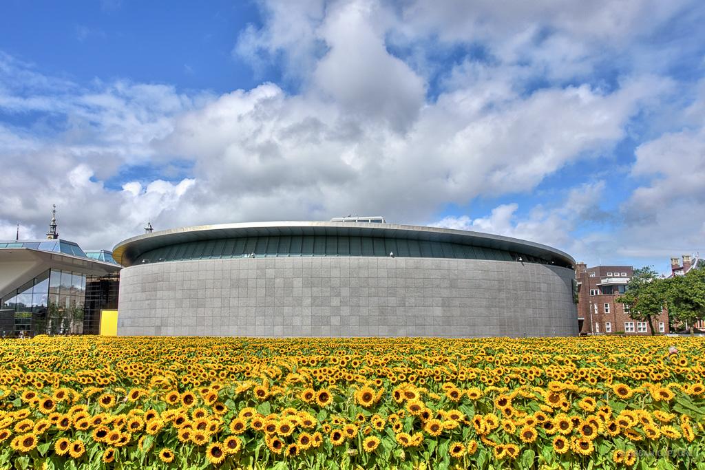 Van Gogh Museum Sunflowers Museumplein Amsterdam The Netherlands