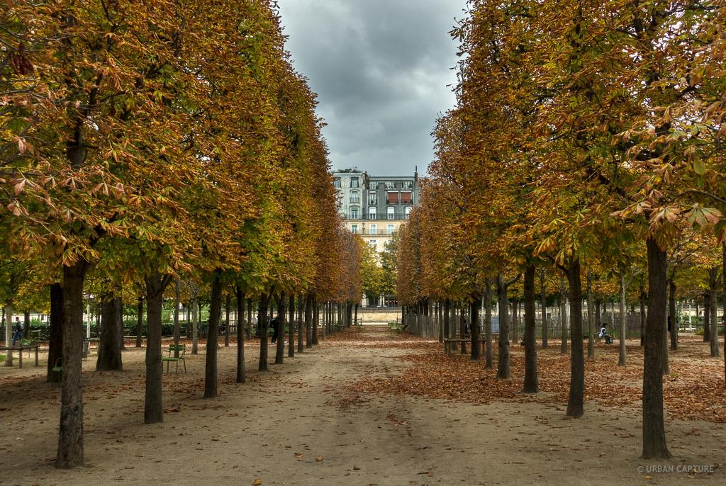 All e centrale jardin des tuileries paris france for Jardins tuileries paris france