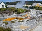 Day 24 | Pohutu Geyser, Whakarewarewa, New Zealand