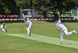 Day 32 | Cricket Kilbirnie Park, Wellington, New Zealand