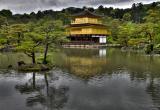 Day 153 | Kinkaku-ji, Kyoto, Japan