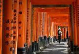 Day 155 | Fushimi Inari-taisha Shrine, Kyoto, Japan